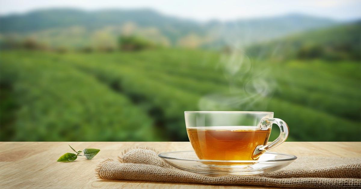 Čaj i čajne mješavine - blagodati za zdravlje organizma
